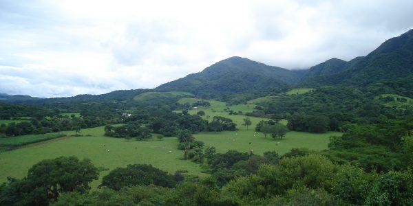 Pampa de Tariquia