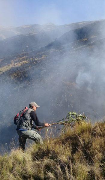 Sofocación exitosa de incendio en el Parque Nacional Carrasco
