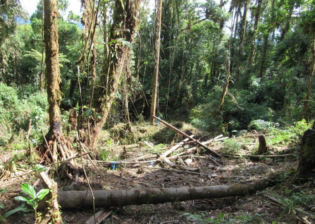Loteadores avallan territorio en el Parque Nacional Carrasco
