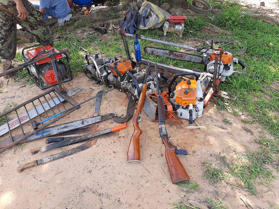 Motosierras y armas de fuego decomisadas.