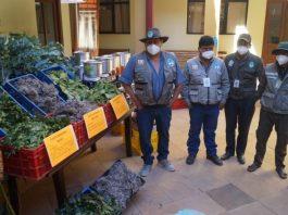 Personal de Sernap dona plantas medicinales