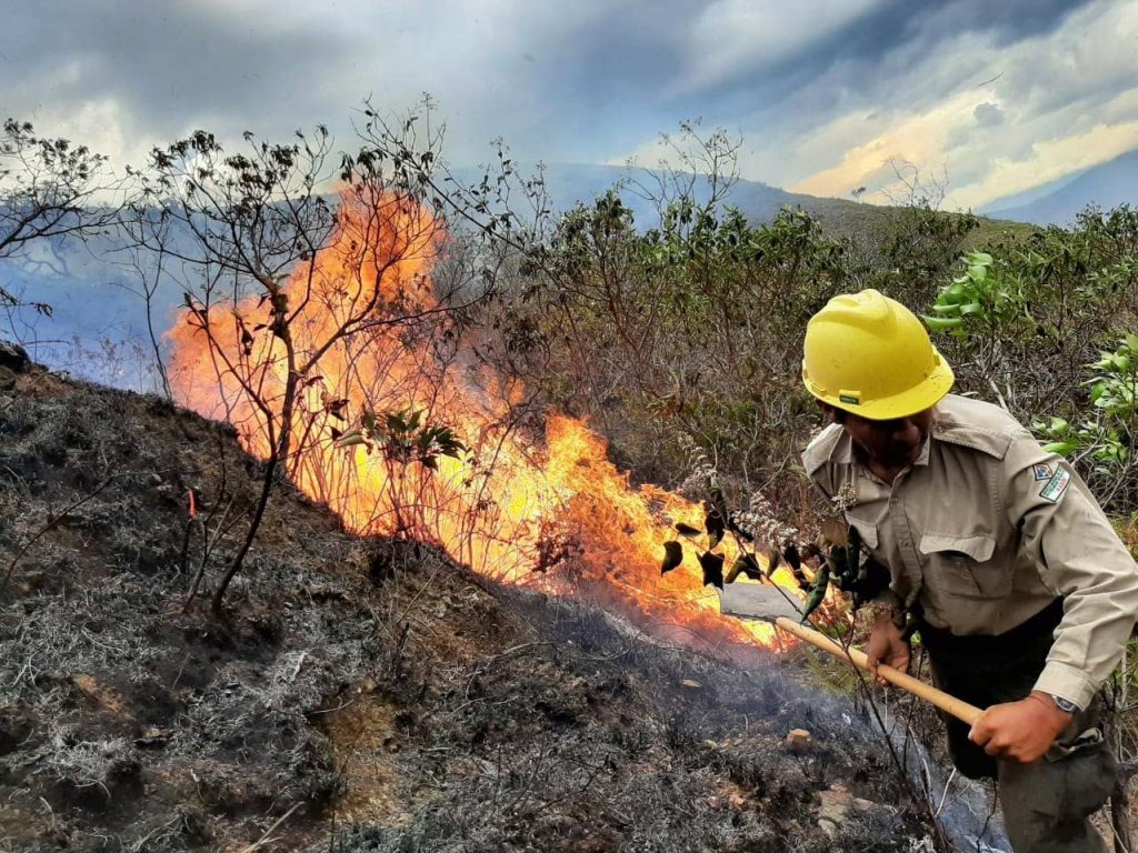 Personal de Sernap sofocando incendio