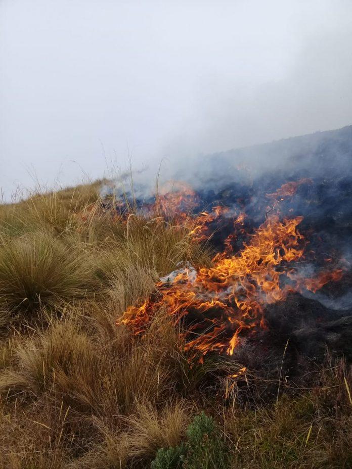 Incendio en el Parque Nacional Carrasco