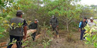 Sernap incauta madera ilegal
