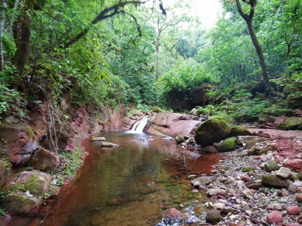 Cascada Cevilar