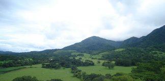 Pampa de Tariquía