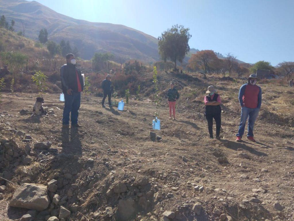 Remoción de suelos