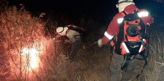 Guardaparques sofocando incendios