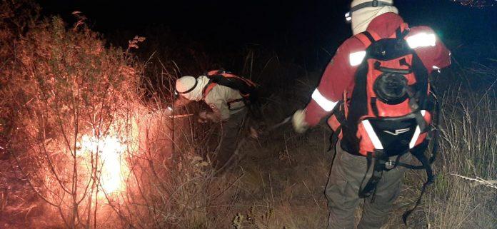 Guardaparques sofocando incendios
